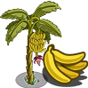 banana tree icon, banana tree,